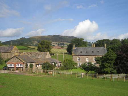 Werngochlyn farm